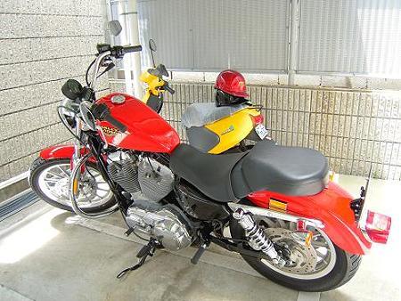 DSCN5043