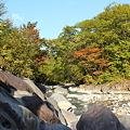 Photos: 岩手県八幡平の紅葉・1