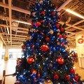 写真: IKEAのツリー