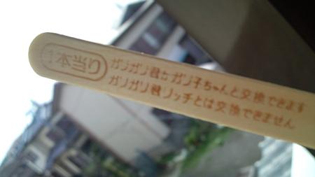 わーいヾ(^▽^)ノ初...
