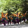 朝霞翔舞 - 第5回よさこい祭りin光が丘公園 2011