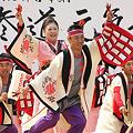 写真: NTTドコモ高知支店_16 - 原宿表参道元氣祭 スーパーよさこい 2011