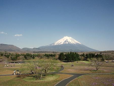 会場からの富士山@富士芝桜まつり2011