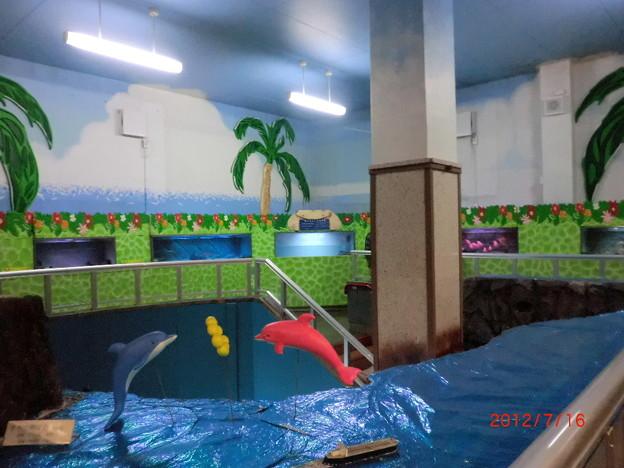 室蘭水族館(2012.7).17