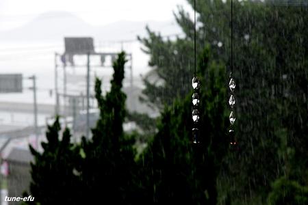 雨になった