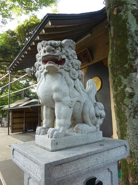 須賀神社 03