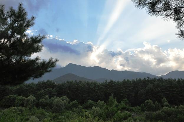 Photos: 三景園011