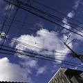 Photos: 2010-11-01の空