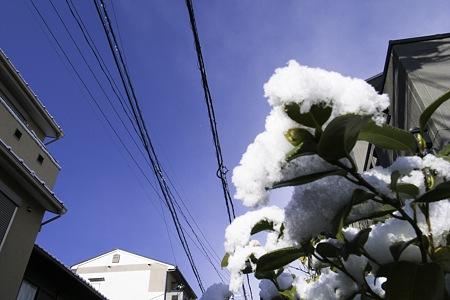 2011-03-04の空