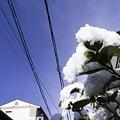 Photos: 2011-03-04の空
