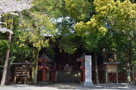静岡浅間神社・少彦名神社