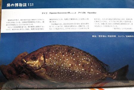 魚の博物誌