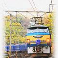 東海道本線 函南-三島 寝台特急 富士・はやぶさ