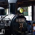 C12 66