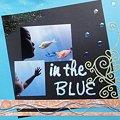 写真: 『in the BLUE』