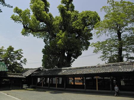 福島八幡社