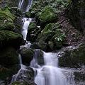 写真: 深森の薄衣の滝