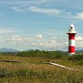 Photos: 石狩灯台