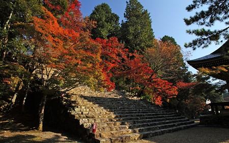 2010神護寺30