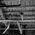 Photos: The Ceiling