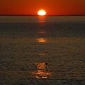 The Oval Sun
