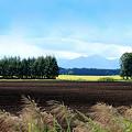農村の秋模様