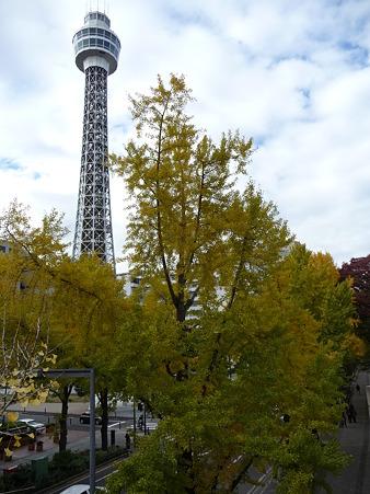 101119-紅葉 山下公園通り (51)