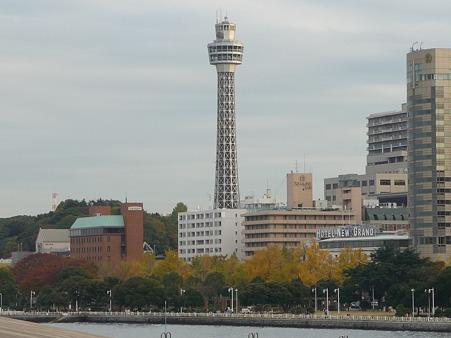 101119-大桟橋 (14)