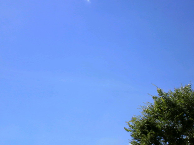 写真: 今日の空色
