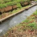 増水した用水路01-12.07.06