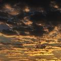 写真: raw-20101030_171608