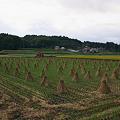 干し藁と赤水門