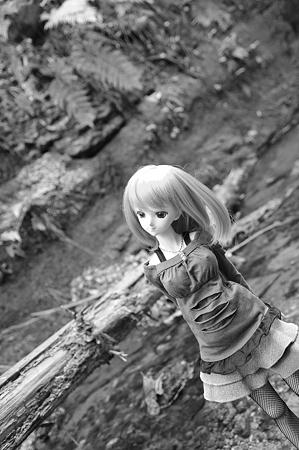 IMGP9614-kuro