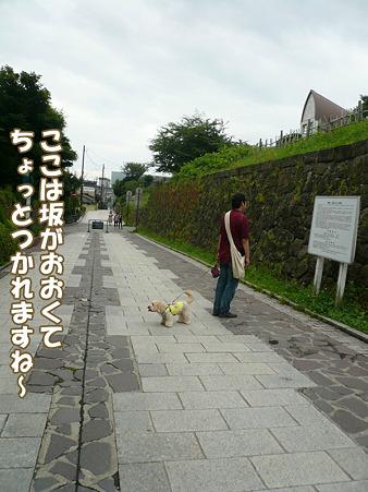 函館散歩 元町 5