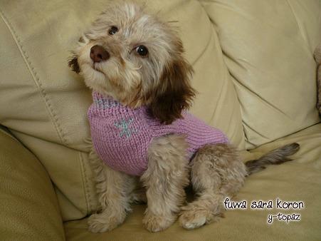 みらくのおニュー手編みセーター 3