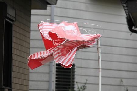 2010.09.09 和泉川 台風9号