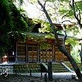 Photos: 秋陽の三渓園 4