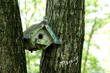 可愛い巣箱・・