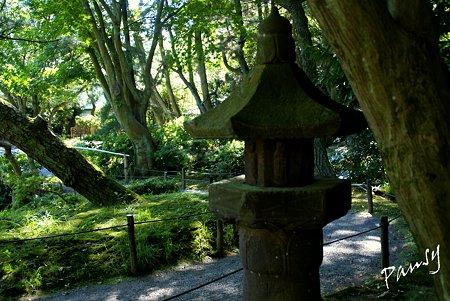 緑陰の石灯籠・・夏の三渓園内苑・・4