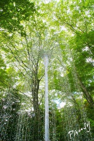 クリスタル シャワー  箱根ガラスの森・・25