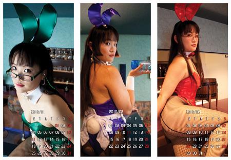 2010年1、2、3月カレンダー
