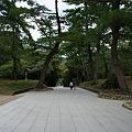 写真: 2011年10月2日出雲大社02