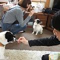 Photos: お兄ちゃん、お姉ちゃん