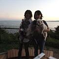 Photos: 浜名湖バックに撮影