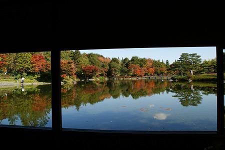 紅葉風景を望む窓!(101111)