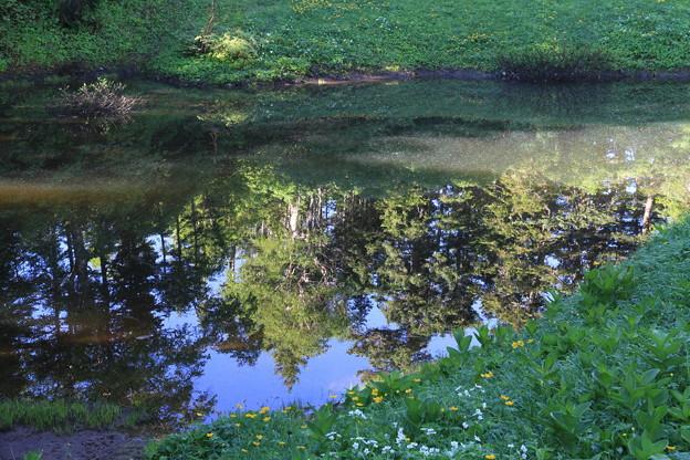 写真: 100722-69蝶ヶ岳登山・妖精の池