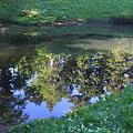 100722-69蝶ヶ岳登山・妖精の池