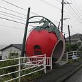 写真: 100519-3九州ロングツーリング・りんごのバス停