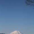 Photos: 110131-117山頂からの富士山