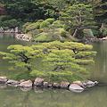 110516-142四国中国地方ロングツーリング・縮景園・濯纓池